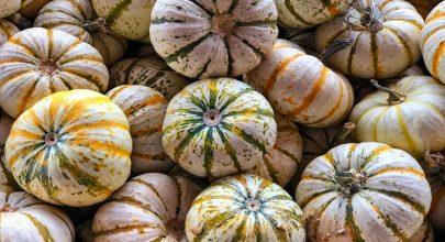 Bundeva dijeta – plan ishrane za idealane rezultate