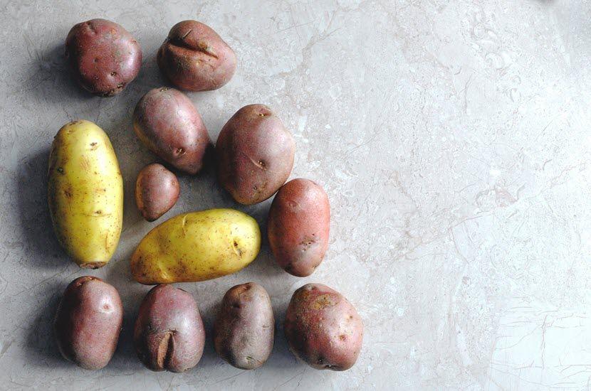 Hrana bogata ugljenim hidratima