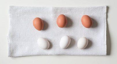 Proteini, ugljeni hidrati i masti u ishrani