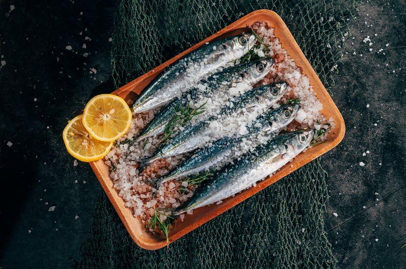 Važnost ribe u ishrani